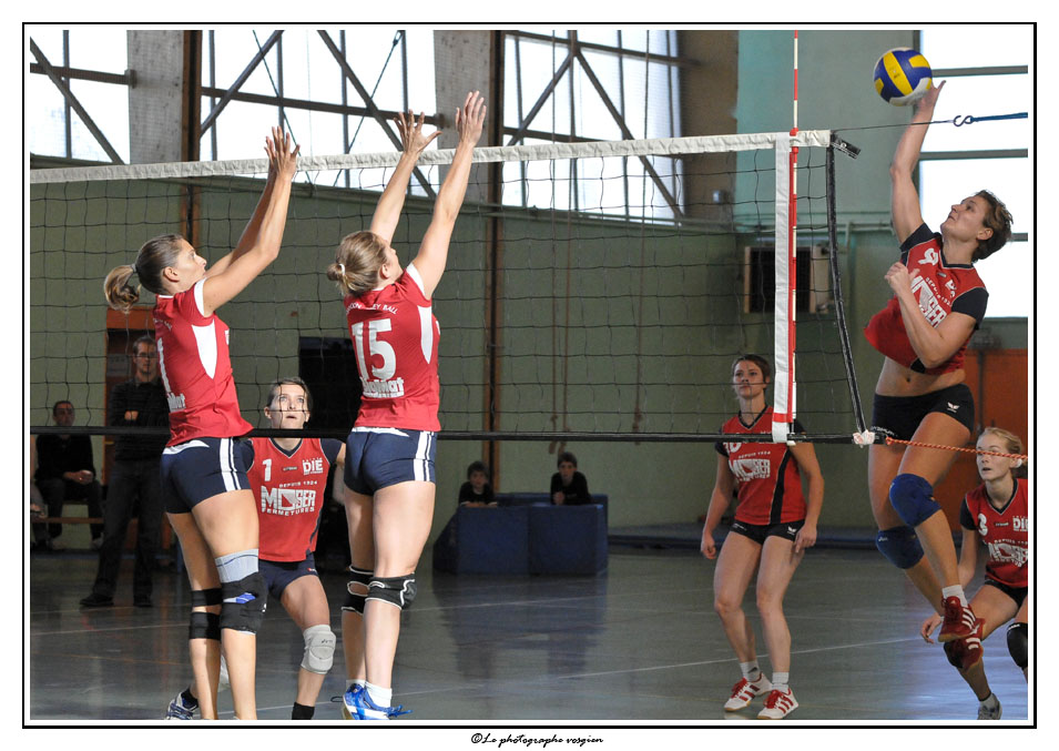 Volley N3F _D336128